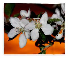 Apple Blossom Sunrise I Fleece Blanket