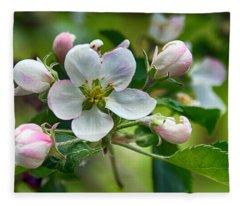 Apple Blossom And Buds Fleece Blanket