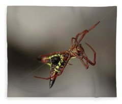 Arrow-shaped Micrathena Spider Starting A Web Fleece Blanket