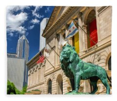 Art Institute In Chicago Fleece Blanket