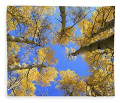 Aspens Skyward Fleece Blanket