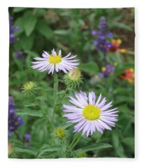 Asters In Close-up Fleece Blanket