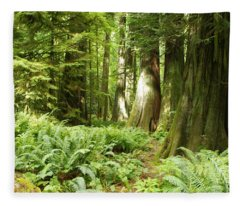 At Cathedral Grove Fleece Blanket