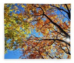 Autumn Afternoon Fleece Blanket