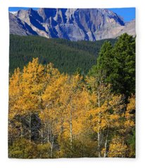 Autumn Aspens And Longs Peak Fleece Blanket