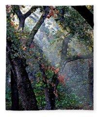 Autumn At First Light Fleece Blanket