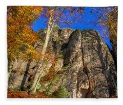 Autumn Colors In The Saxon Switzerland Fleece Blanket