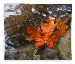 Autumn Down Under Fleece Blanket