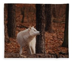 Autumn Gaze Fleece Blanket