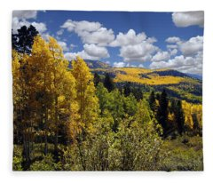 Autumn In New Mexico Fleece Blanket