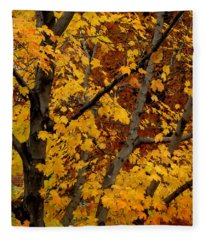 Autumn Moods 21 Fleece Blanket