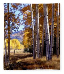 Autumn Paint Chama New Mexico Fleece Blanket