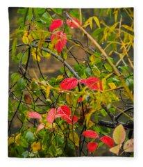 Autumn Rain Fleece Blanket