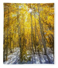 Autumn Rays Fleece Blanket