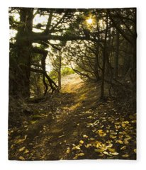 Autumn Trail In Woods Fleece Blanket