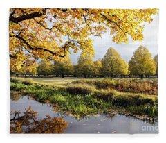 Autumn Trees Fleece Blanket