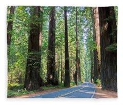 Avenue Of The Giants Fleece Blanket