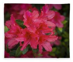 Azaleas 1 Fleece Blanket