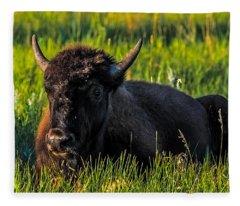 Baby Buffalo Fleece Blanket