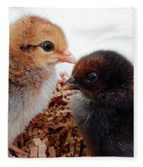 Baby Chicks Fleece Blanket