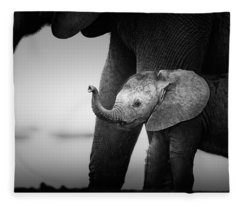 Baby Elephant Next To Cow  Fleece Blanket