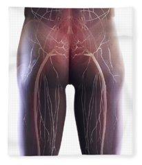 Back Pain Sciatica Fleece Blanket