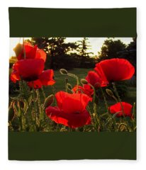 Backlit Red Poppies Fleece Blanket