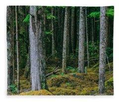 Inside View Backroad Forest Fleece Blanket