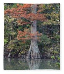 Bald Cypress In White River Nrw Arkansas Fleece Blanket