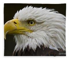 Bald Eagle - 7 Fleece Blanket