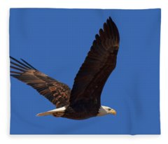 Bald Eagle Fly By Fleece Blanket