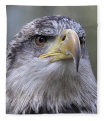 Bald Eagle - Juvenile Fleece Blanket