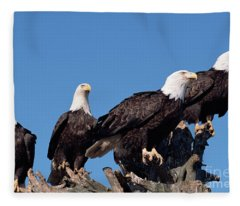 Bald Eagles Quartet Fleece Blanket