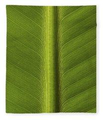 Banana Leaf Rib Fleece Blanket