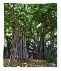 Banyan Tree At Honolulu Zoo Fleece Blanket