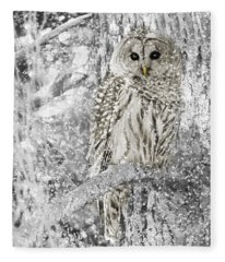 Barred Owl Snowy Day In The Forest Fleece Blanket