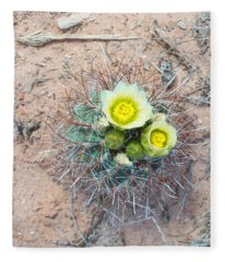 Barrel Cactus Blossoms Fleece Blanket