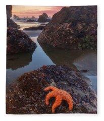 Starfish Photographs Fleece Blankets