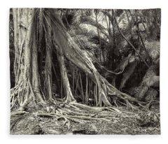 Strangler Fig Fleece Blanket