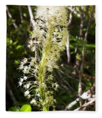 Bear Grass No 3 Fleece Blanket