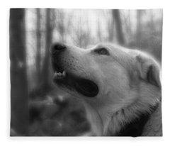 Bear Tooth Not Camera Shy Fleece Blanket