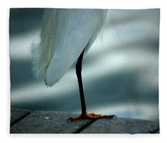 Bed Time Fleece Blanket