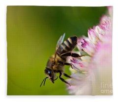 Bee Sitting On A Flower Fleece Blanket