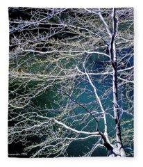 Beech Tree Highlights And Shadows Digital Art Fleece Blanket