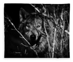 Beware The Woods Fleece Blanket