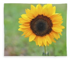 Big Bright Yellow Colorful Sunflower Art Print Fleece Blanket