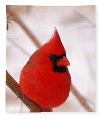 Big Red  Cardinal Bird In Snow Fleece Blanket