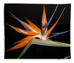 Bird Of Paradise Beauty 4 Fleece Blanket