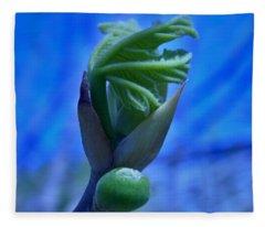 Birth Fleece Blanket