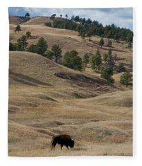 Bison Grazing Custer State Park South Fleece Blanket